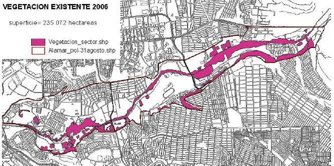 Vegetacion Existente 2006