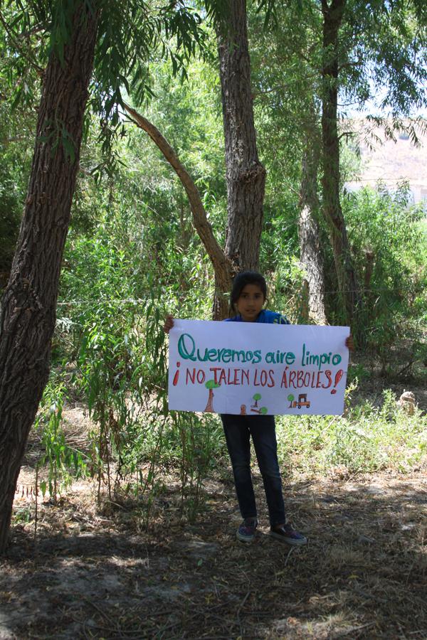 Queremos aire limpio: NO TALEN LOS ÁRBOLES